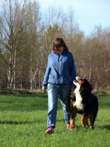 Jeanett og Bamse på trening våren 2013. Foto: Annette Traxler.