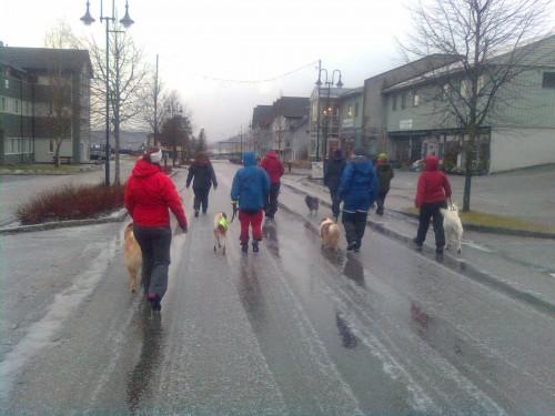 Miljøtrening i Kolvereid sentrum desember 2015